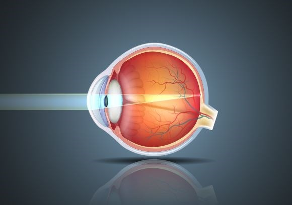 Eye anatomy animation