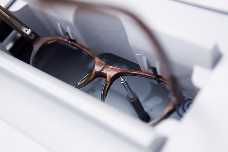 Eyeglasses with Hoya Vision lenses